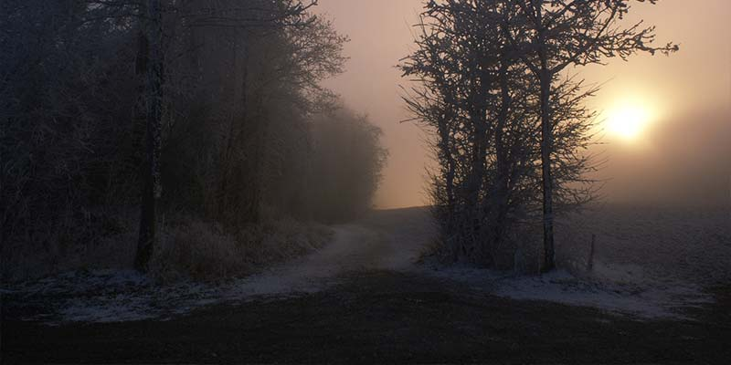 Frosty country paths