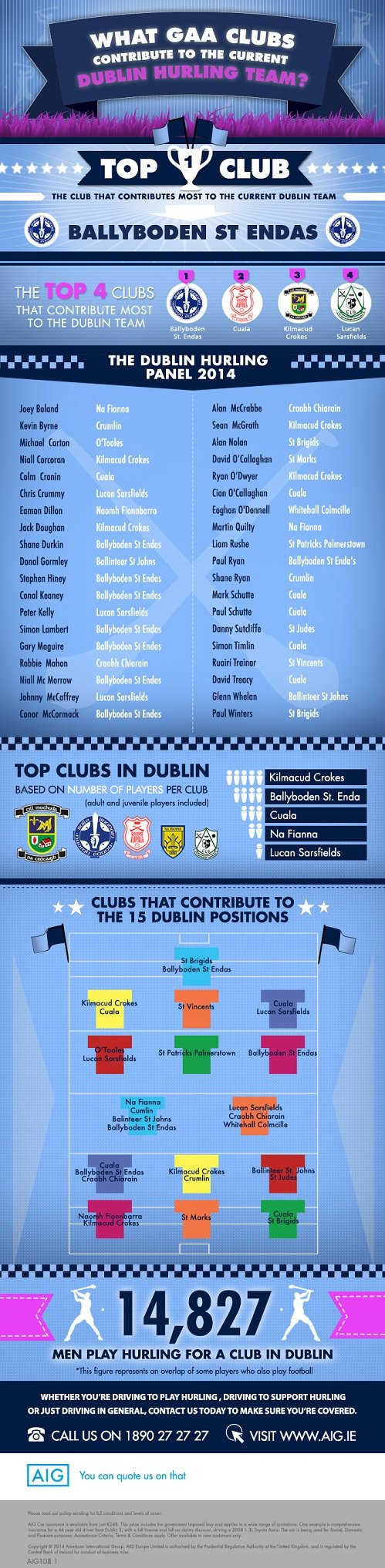 Dublin Men's Hurling Team Infographic