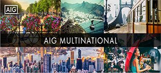 AIG Multinational Solutions