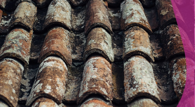 Check your Roof Tiles