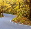 5 Irish Autumn Road Trips