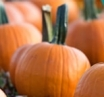 10 family Halloween events around Ireland | AIG Ireland